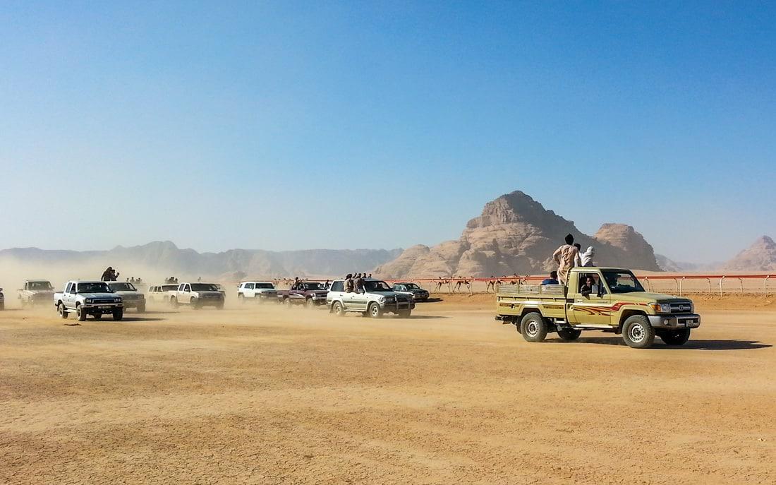 camel racing in wadi rum