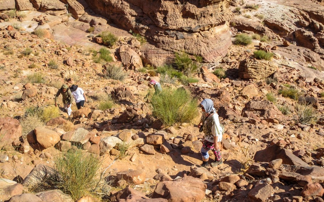guests and guide hiking a bedouin road